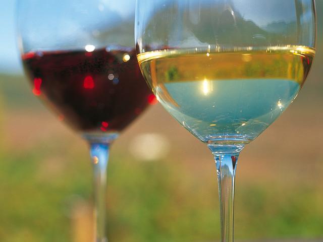 Wine tasting in Deutschnofen